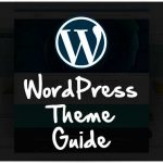 How to Choose Professional WordPress Theme: WordPress theme guide
