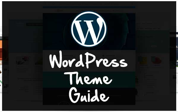 How to Choose Professional Wordpress Theme : WordPress theme guide