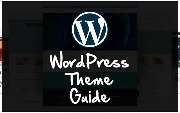 How to Choose Professional Wordpress Theme : WordPress theme guide
