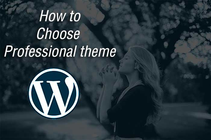 how-to-choose-professional-theme-wordpress-theme-guide-neoblogging